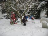 winter_2012_5